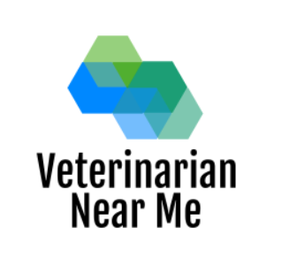Veterinarian Near Me Tampa, FL 33601
